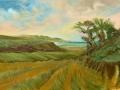 Tom Newton - Cornwall